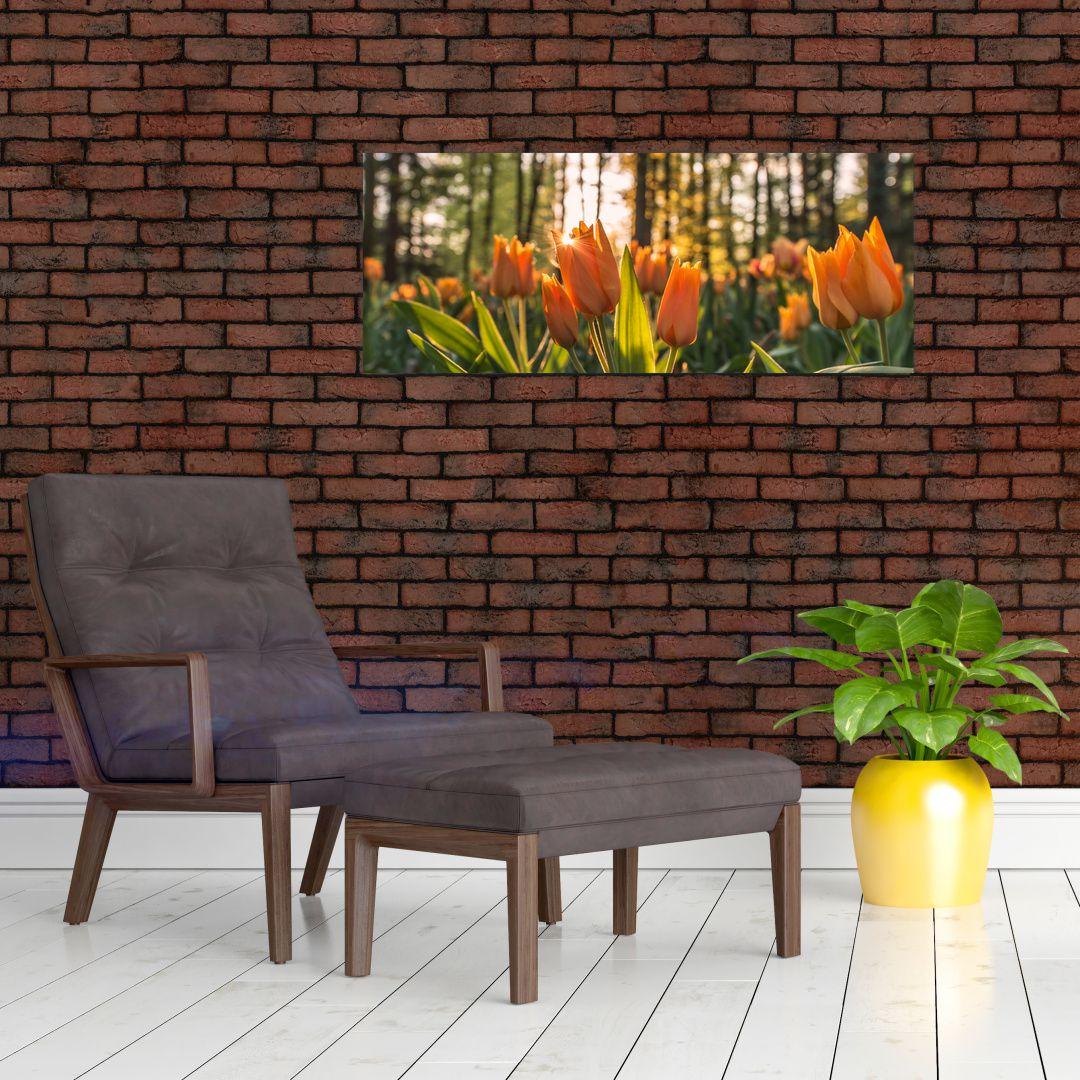 Obraz - kvety tulipánov (V020195V10040)