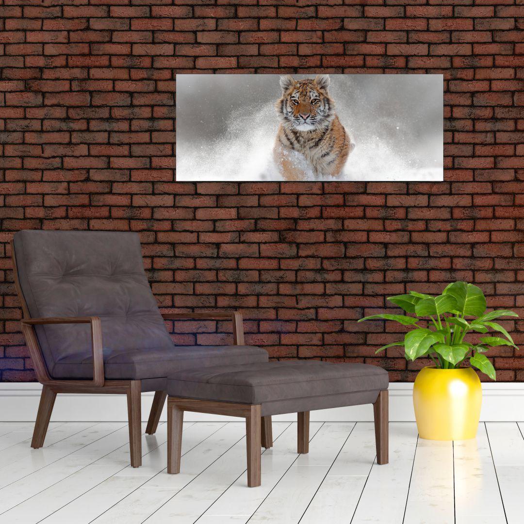 Obraz bežiaceho tigra v snehu (V020719V10040)