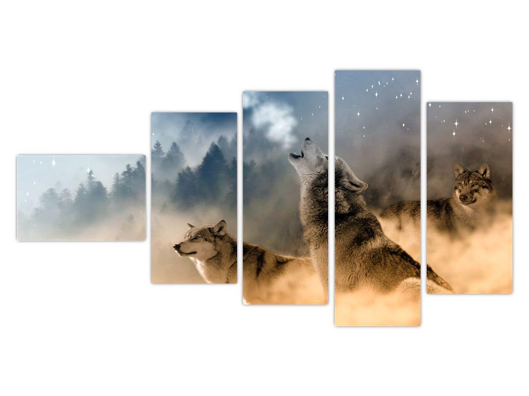 Slika - vukovi zavijaju na mjesec (V020509V11060)