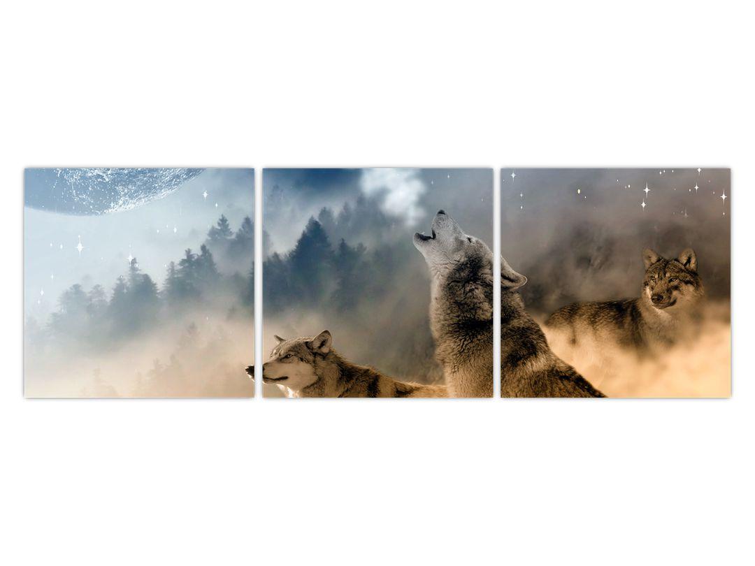 Slika - vukovi zavijaju na mjesec (V020509V12040)