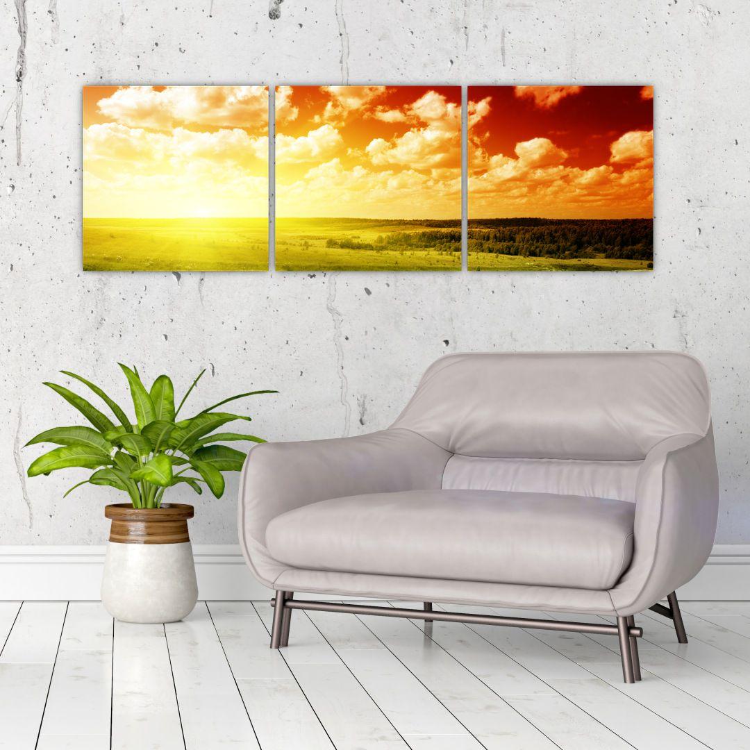 Obraz louky se zářícím sluncem (V021174V12040)