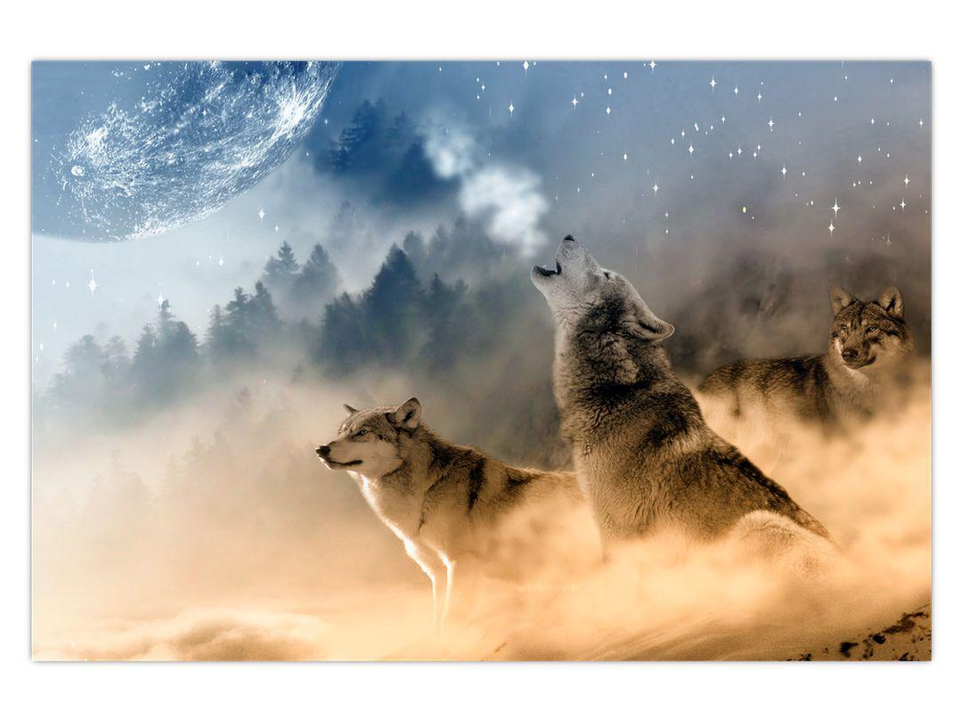 Obraz - vlci vyjící na měsíc (V020509V12080)