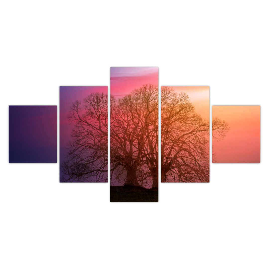 Obraz stromů v mlze (V020088V12570)