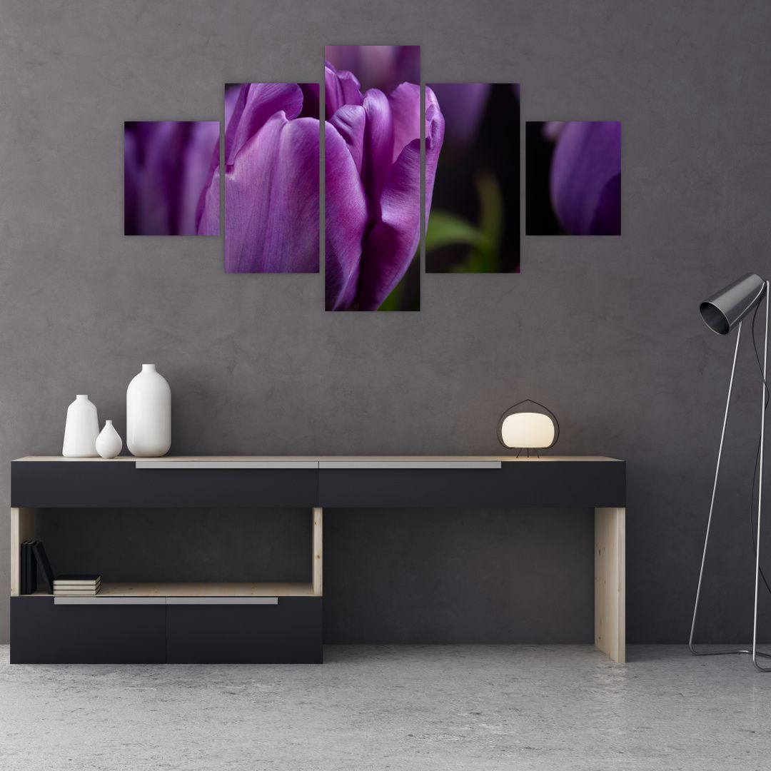 Obraz květů tulipánů (V020215V12570)