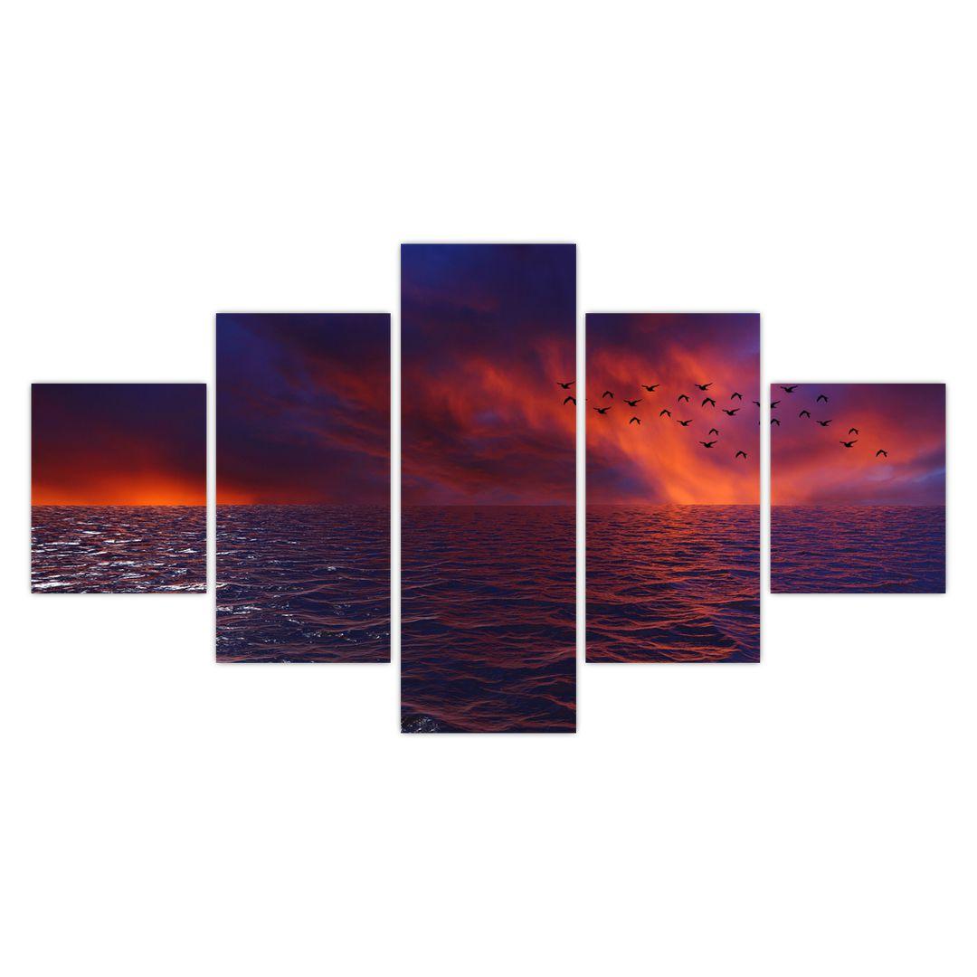 Obraz moře s ptáky (V020351V12570)