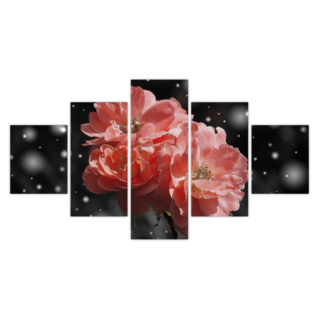 Obraz růžové květiny (V020471V12570)
