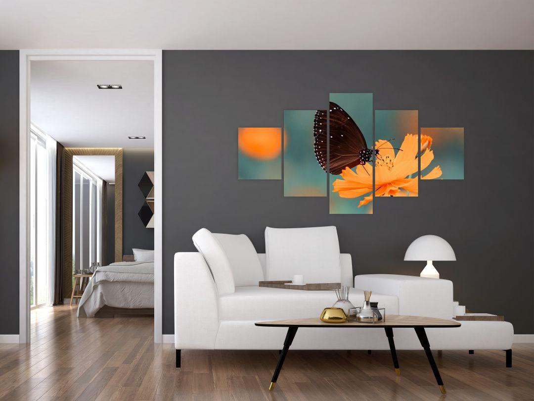 Obraz - motýl na oranžové květině (V020577V12570)