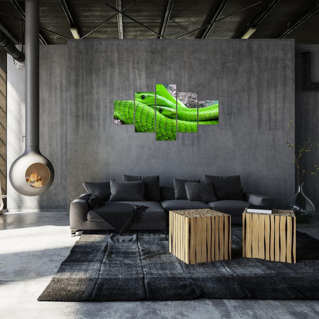 Obraz zelených hadů (V020689V12570)
