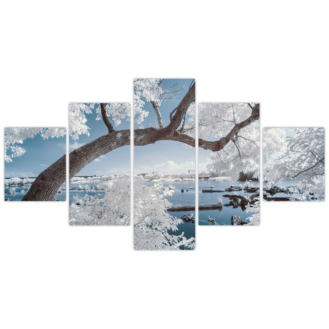 Obraz zasněženého stromu u vody (V020718V12570)