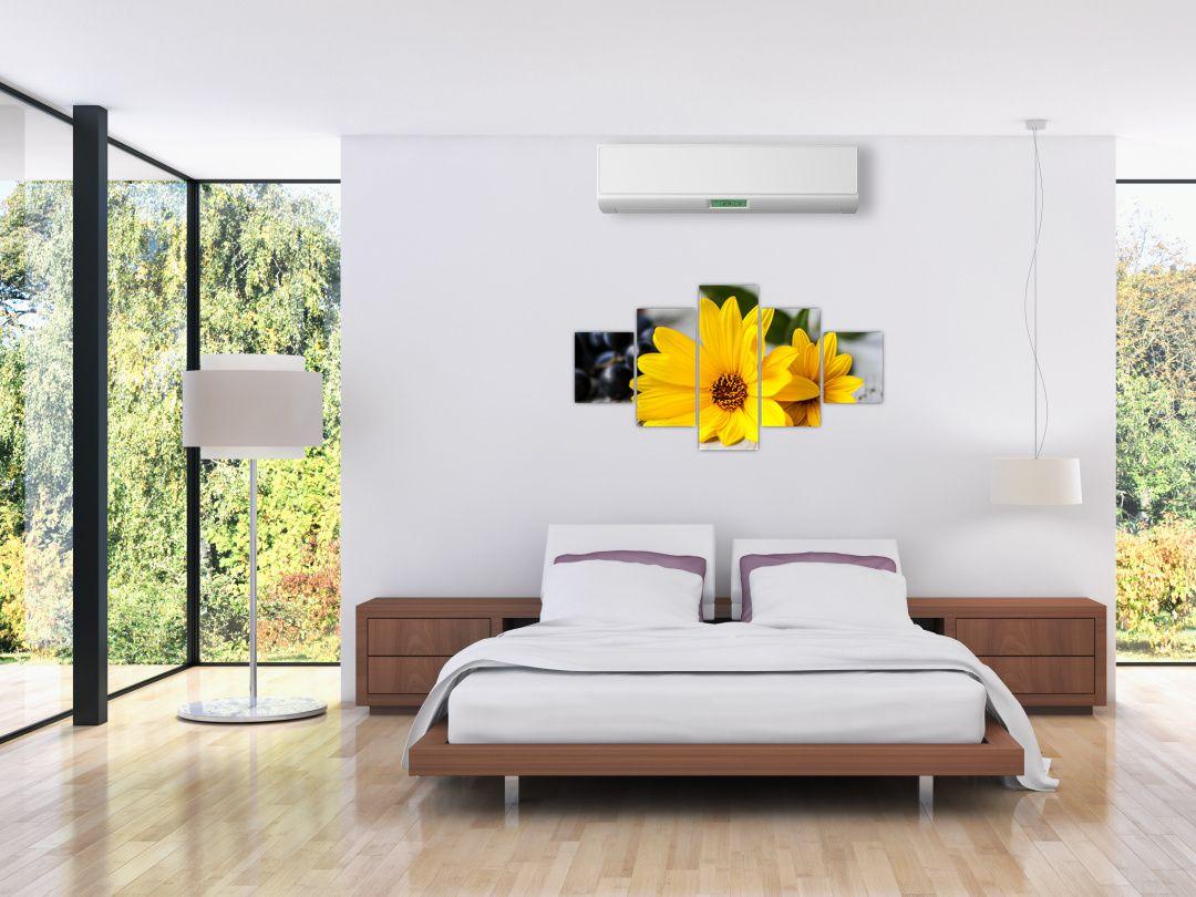 Obraz žluté květiny (V020952V12570)