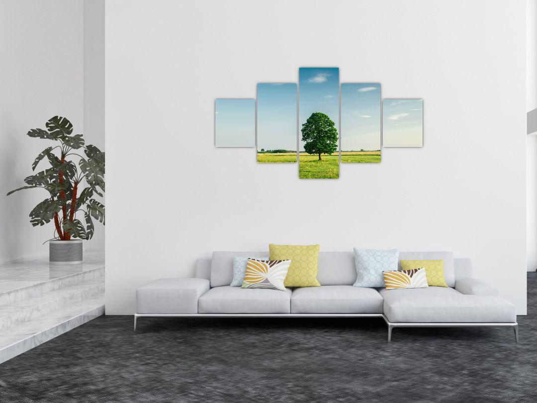 Obraz stromu na louce (V021171V12570)