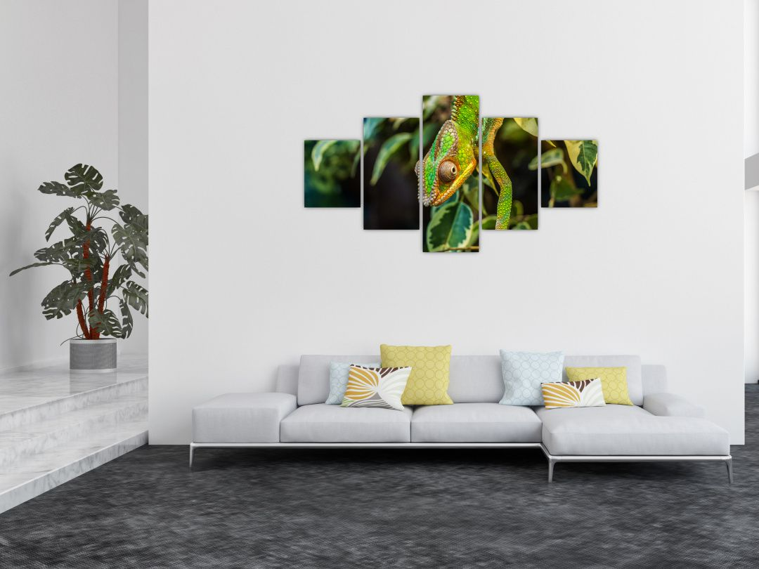 Obraz chameleona (V021236V12570)