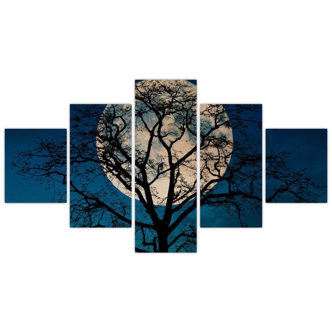 Obaz stromu s úplňkem (V021355V12570)