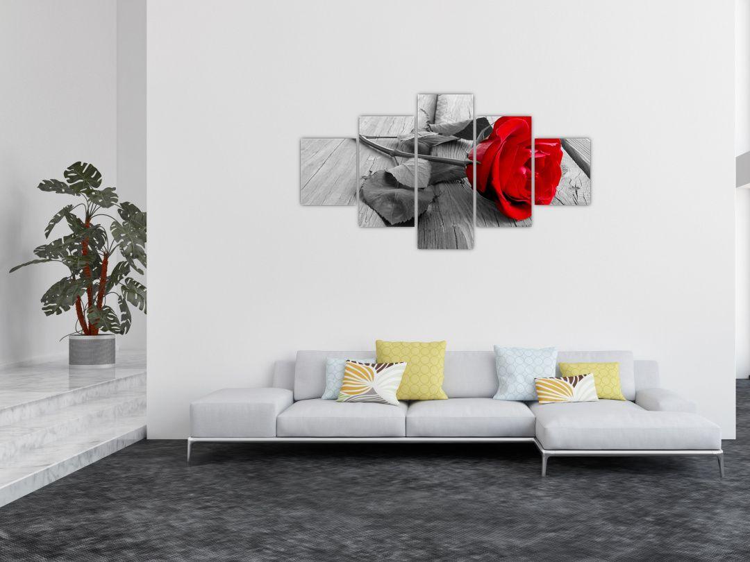 Slika rdeče vrtnice (V022288V12570)