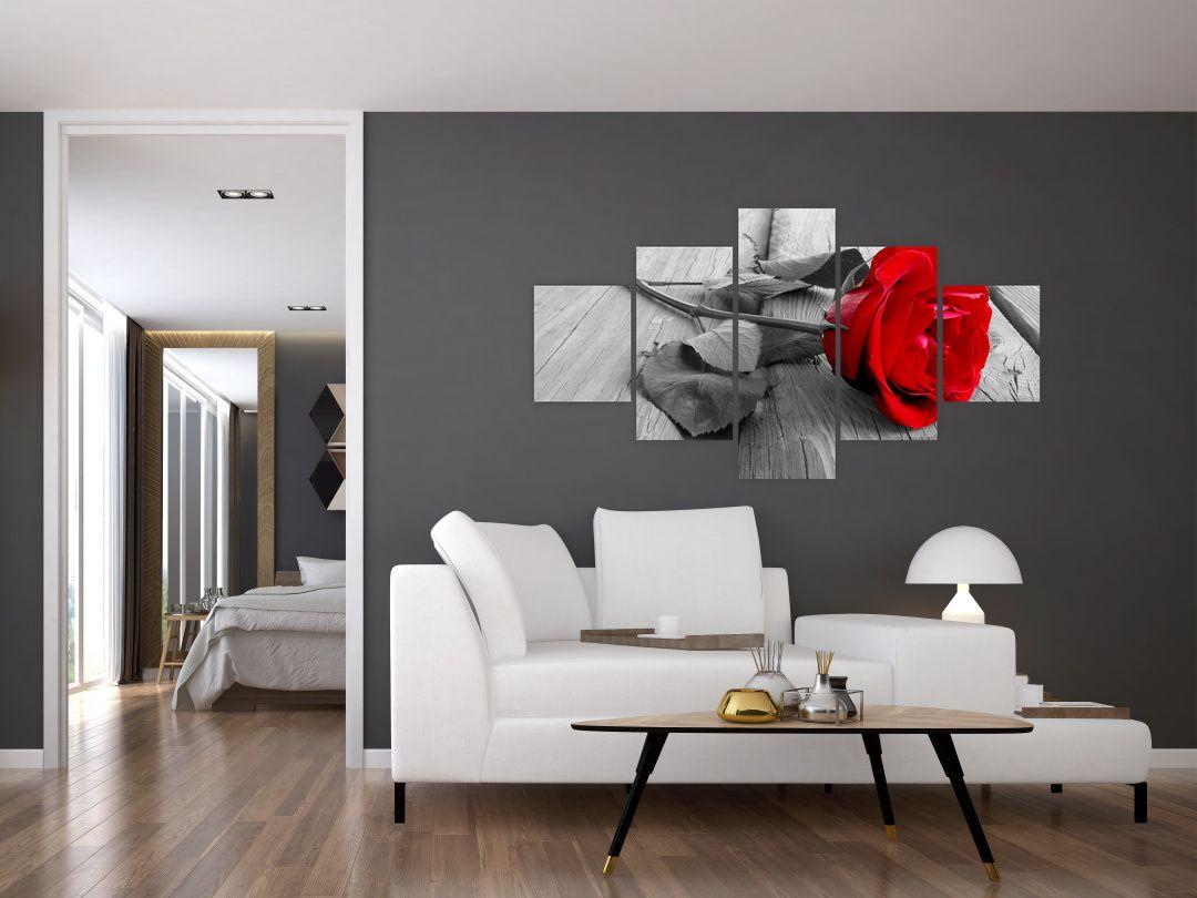 Slika crvene ruže (V022288V12570)