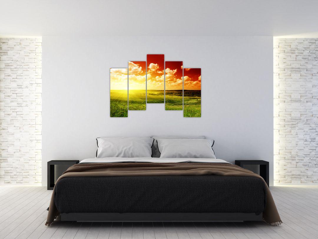 Obraz louky se zářícím sluncem (V021174V12590)