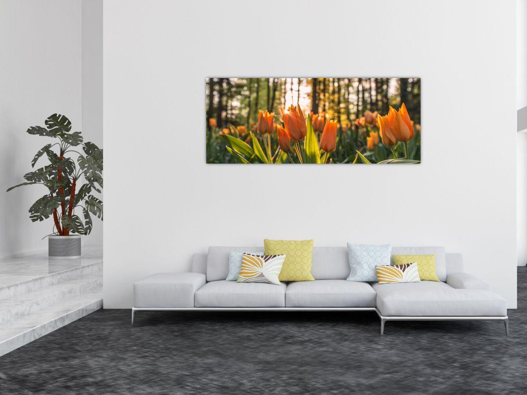 Obraz - kvety tulipánov (V020195V14558)