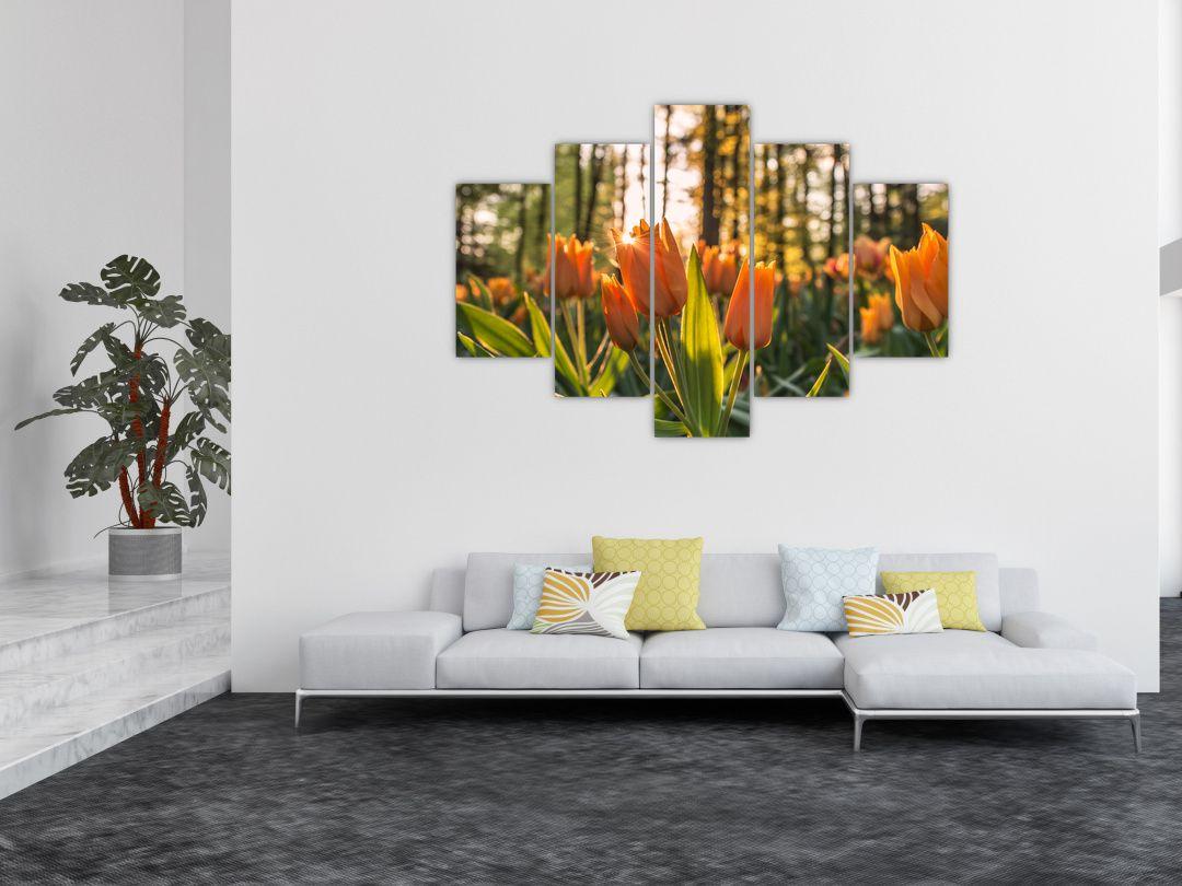 Obraz - kvety tulipánov (V020195V150105)