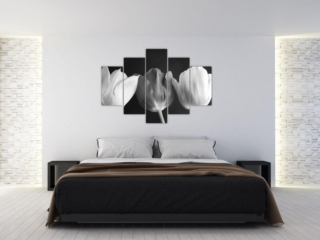 Kép - fekete-fehér tulipán virág (V021916V150105)
