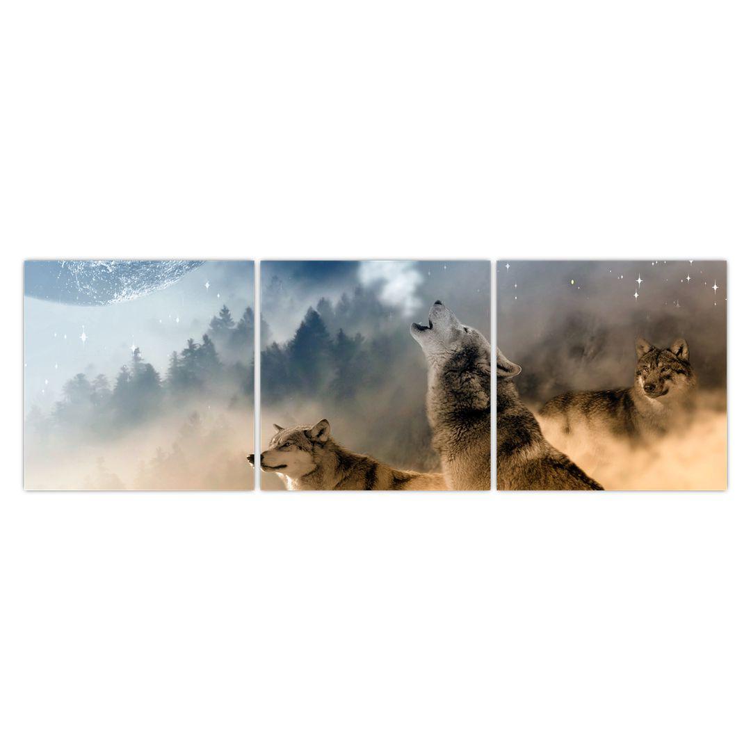 Slika - vukovi zavijaju na mjesec (V020509V15050)