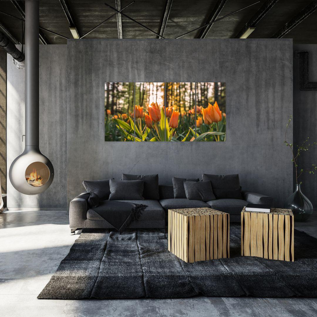 Obraz - kvety tulipánov (V020195V16080)