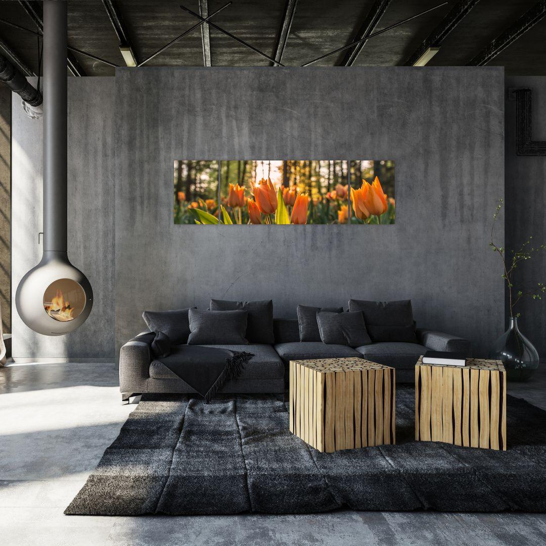 Obraz - kvety tulipánov (V020195V17050)