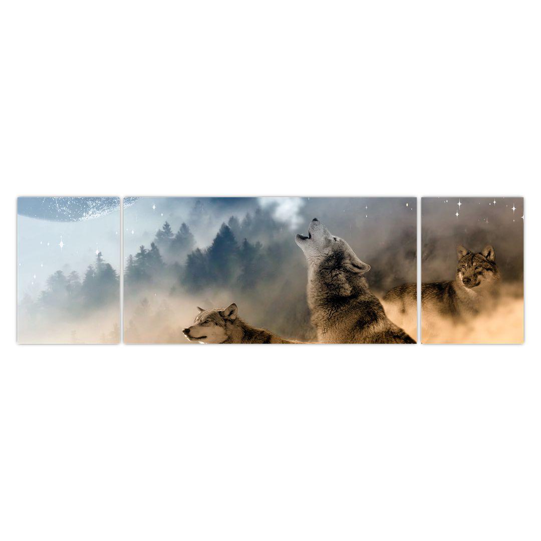 Slika - vukovi zavijaju na mjesec (V020509V17050)