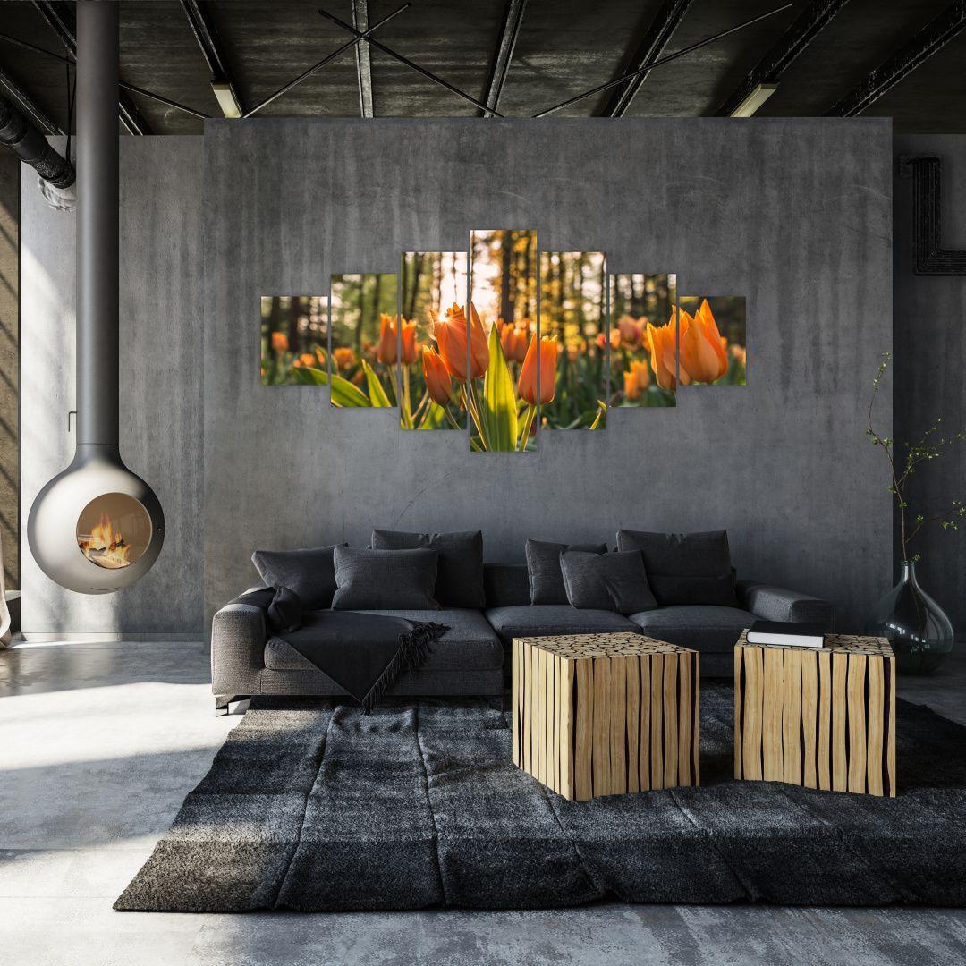 Obraz - kvety tulipánov (V020195V210100)