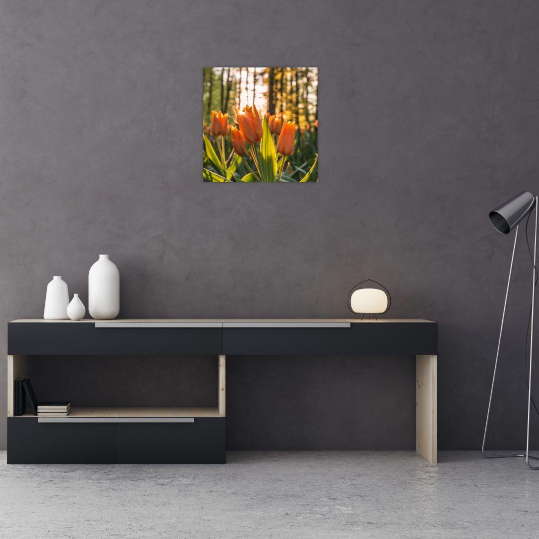 Obraz - kvety tulipánov (V020195V4040)