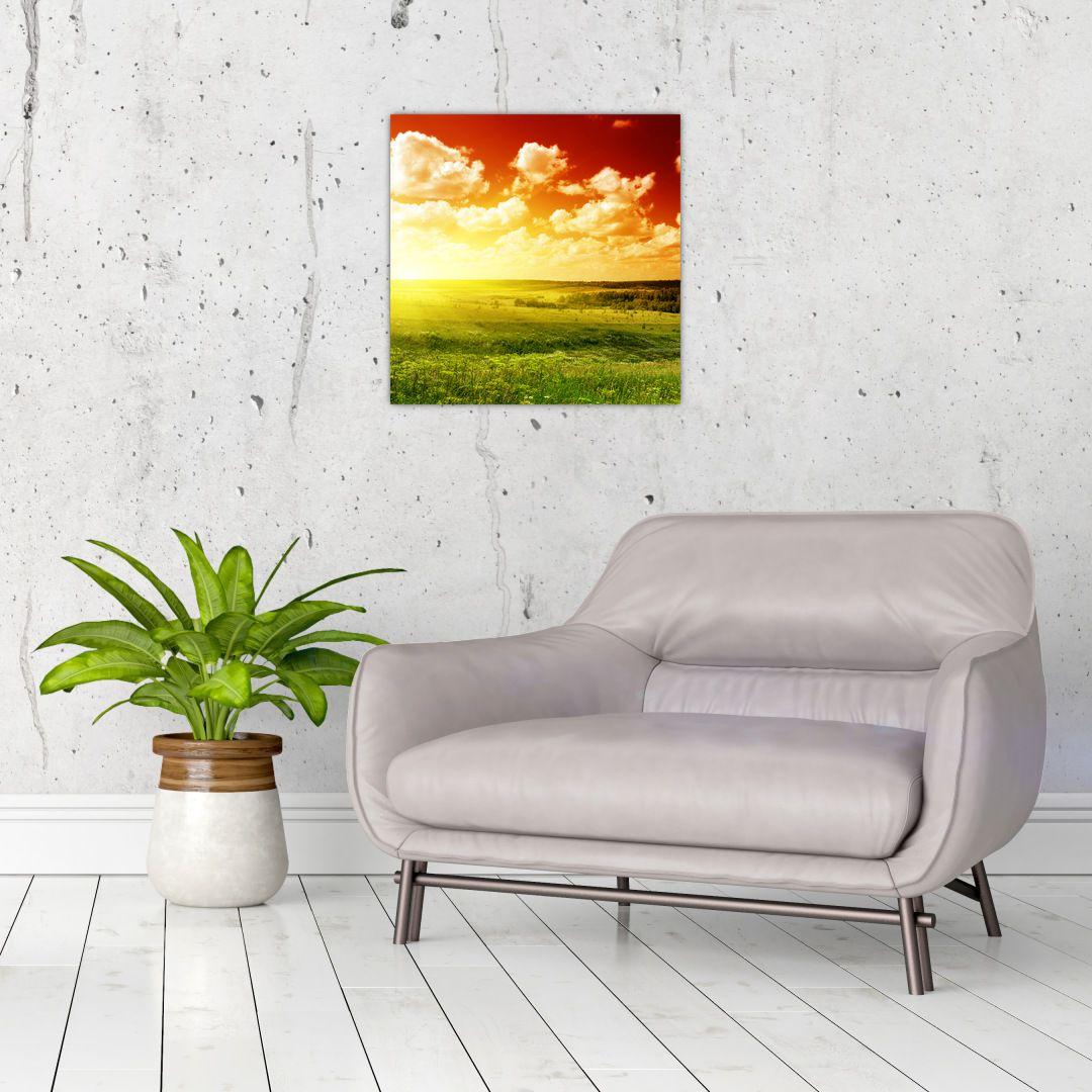 Obraz lúky so žiariacim slnkom (V021174V4040)