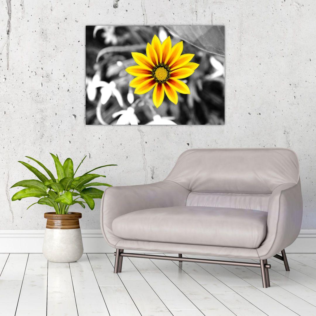 Obraz žluté květiny (V020361V7050)