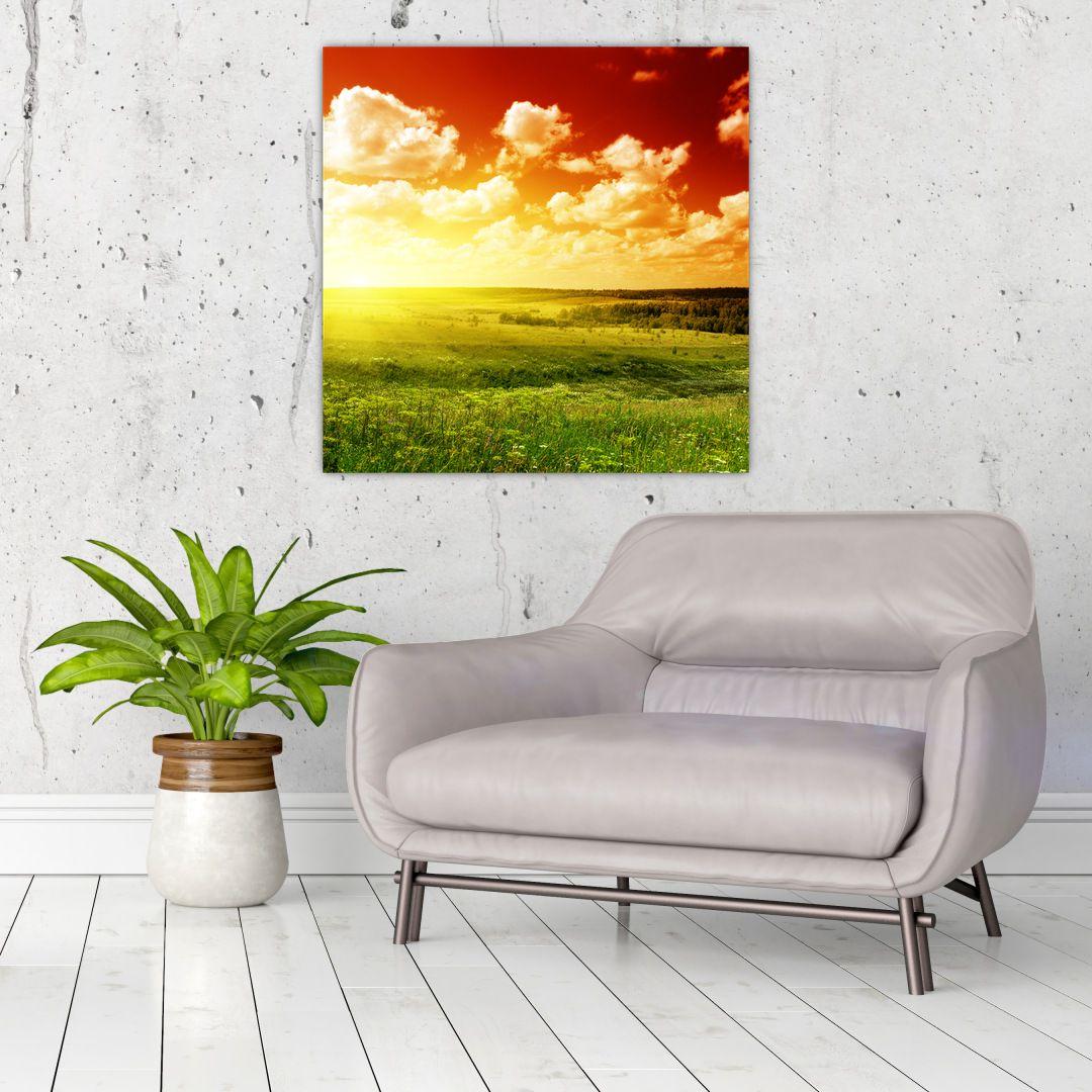 Obraz louky se zářícím sluncem (V021174V7070)