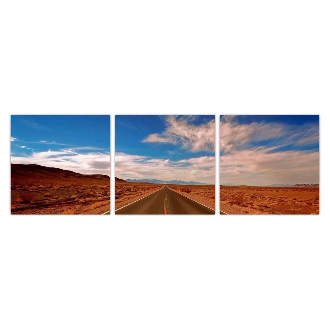 Obraz dlhej cesty (V020076V9030)