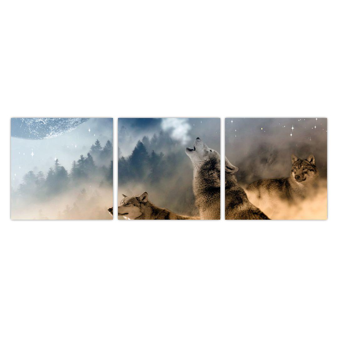 Obraz - vlci vyjící na měsíc (V020509V9030)