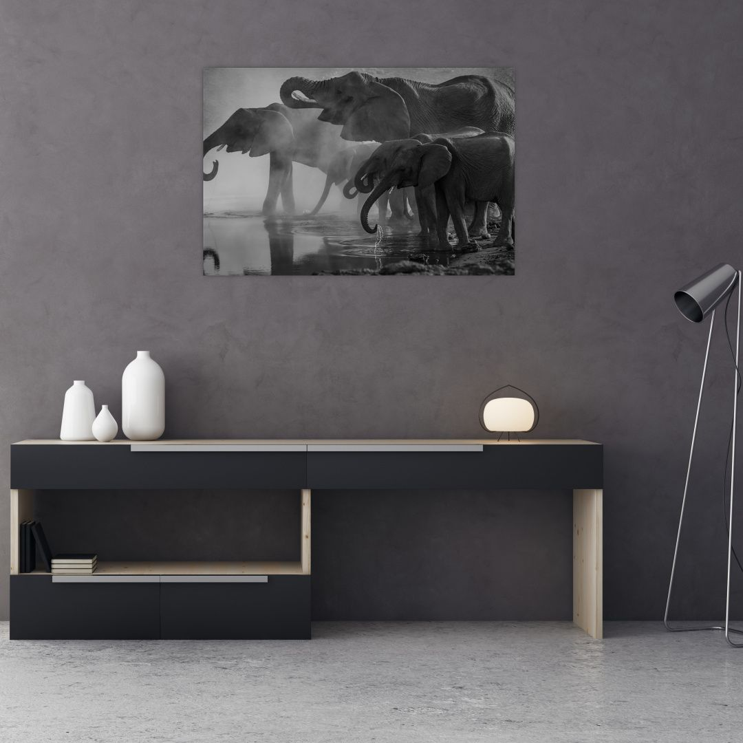Obraz slonů - černobílý (V021575V9060)