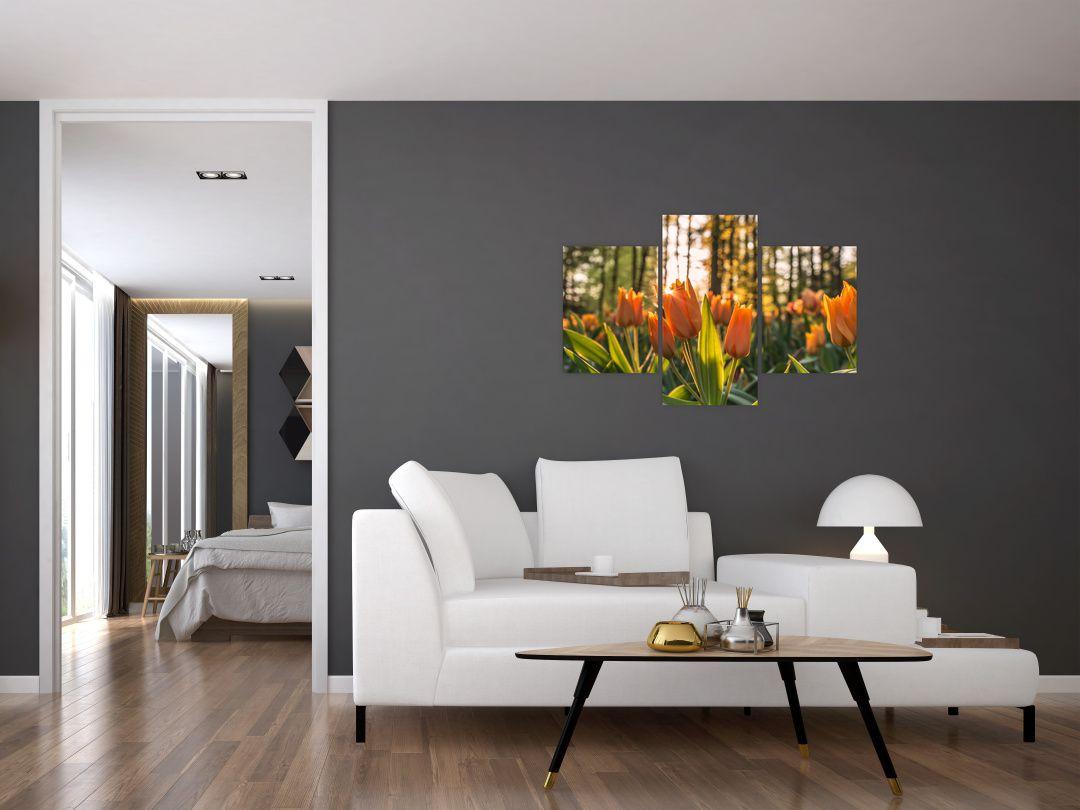 Obraz - kvety tulipánov (V020195V90603PCS)
