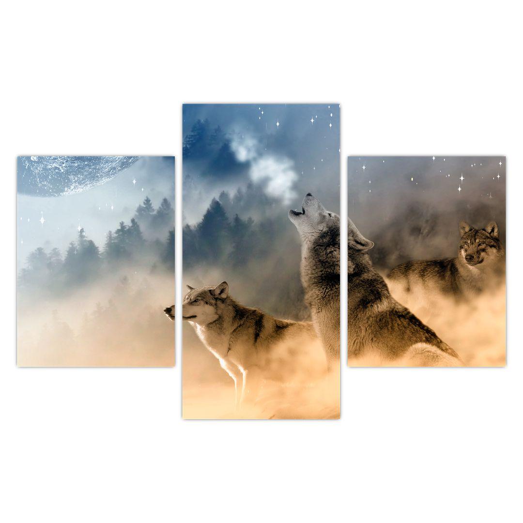 Slika - vukovi zavijaju na mjesec (V020509V90603PCS)