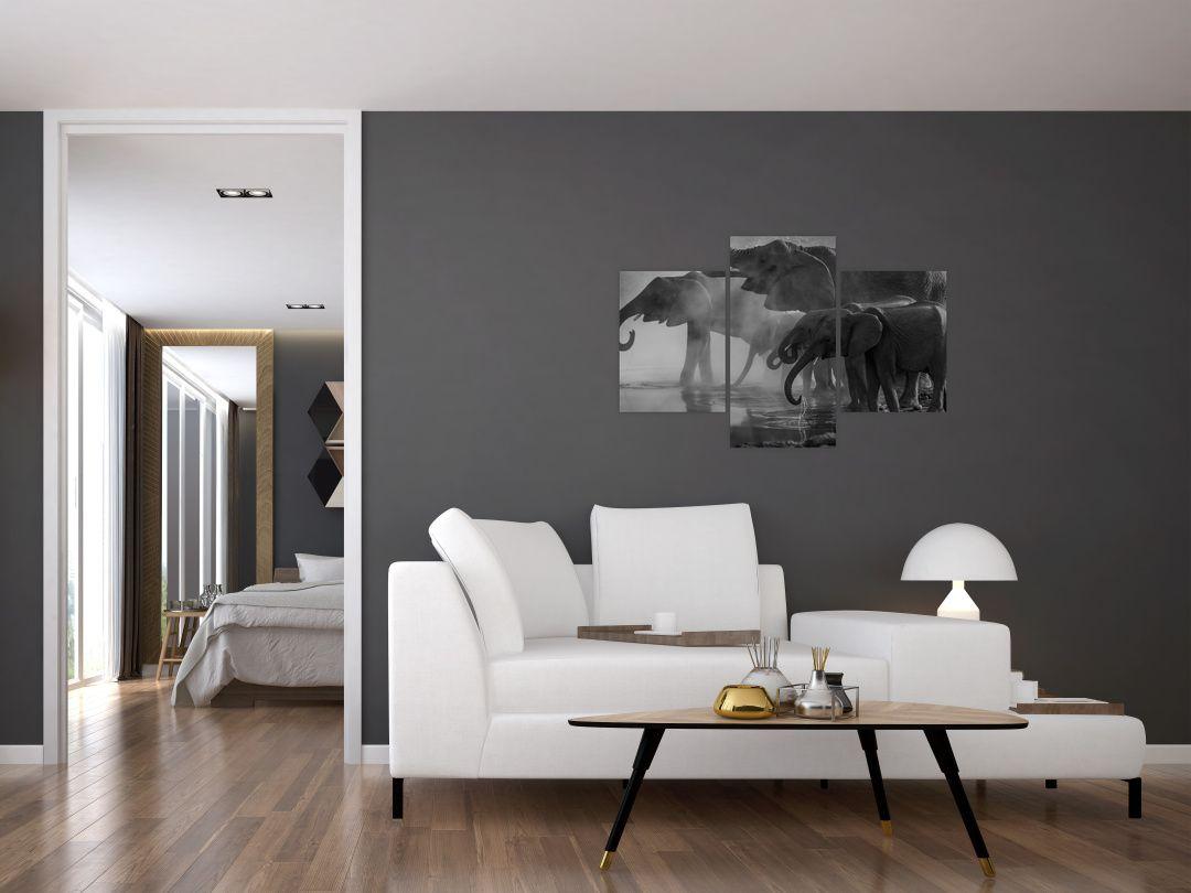 Obraz slonů - černobílý (V021575V90603PCS)